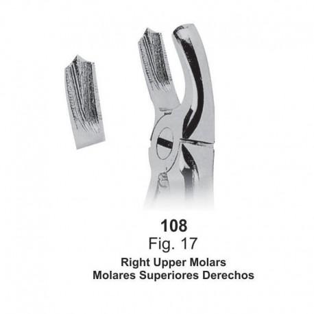 Forceps de extracción (Forma inglesa) Molares superiores derechos. Ref 108