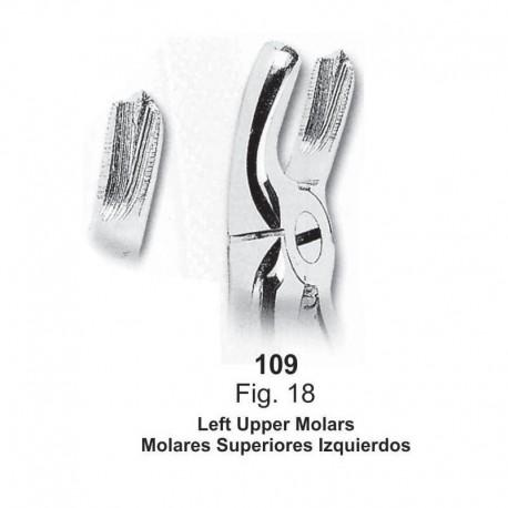 Forceps de extracción (Forma inglesa) Molares superiores izquierdos. Ref 109