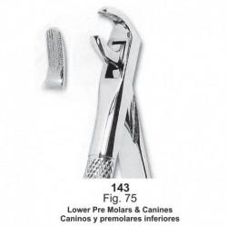 Forceps de extracción (Forma Ingles) Caninos y premolares inferiores