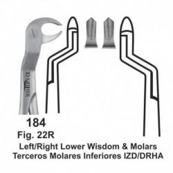 Forceps de extracción (Forma inglesa) Terceros molares inferiores Izquierda