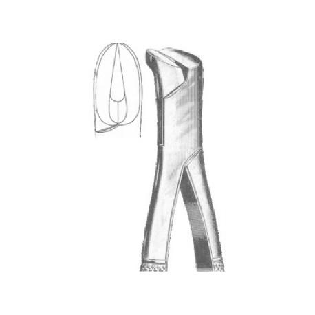 Forceps de extracción (Forma Americana) fig. 06